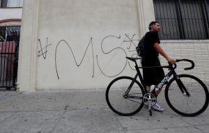 La histórica batalla entre las pandillas Barrio 18 y MS-13 en Nueva York