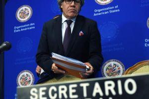 OEA: cubanos torturan en Venezuela y Nicaragua