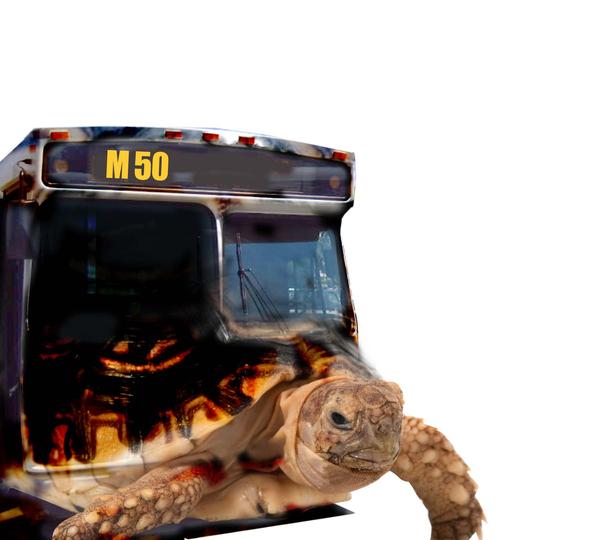 Premian al autobús más lento de NYC