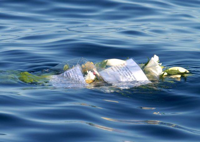 Crucero encallado pudo haber llevado pasajeros indocumentados