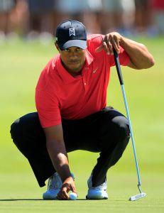Tiger vuelve a rugir  fuerte