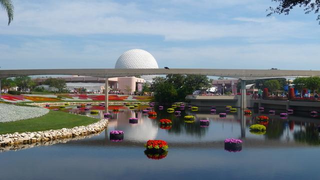 Muere trabajador al caerse en parque Disney de Florida