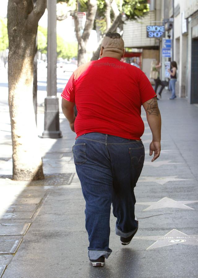 Epidemia de  obesidad para rato