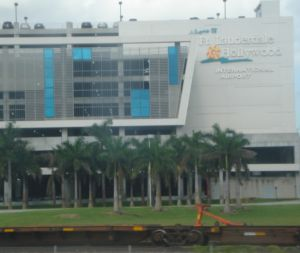 Fort Lauderdale erradicaría accidentes por aves