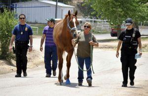 Acusados por lavar dinero en carreras de caballo enfrentarán justicia en Texas