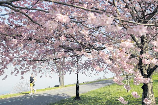 Un verano a bajo costo en NY