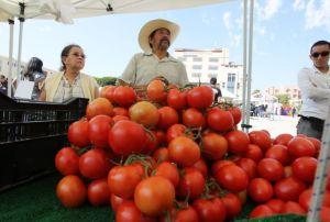 Reanudan guerra contra el tomate mexicano en Florida