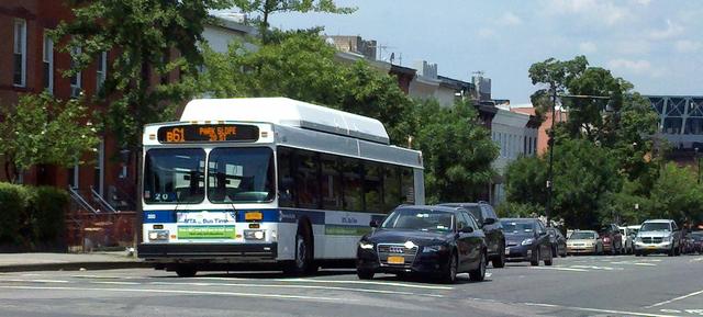 Vecinos de Red Hook claman por más buses