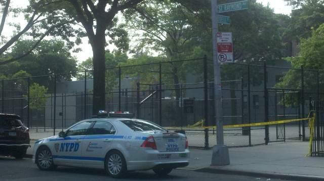 Tiroteo siembra pánico en El Bronx