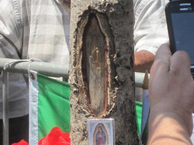 Aparición de la Virgen moviliza a fieles