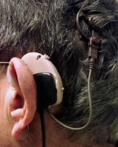 Reparan oídos sordos con células madre