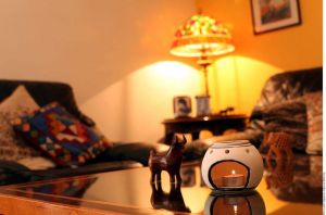 Armoniza tu hogar con aromaterapia