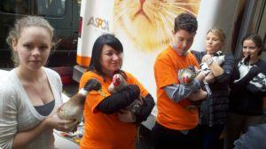 Manhattan: cientos llevan a bendecir sus mascotas