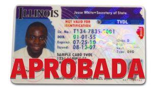 Aprueban licencias de conducir para indocumentados en Illinois