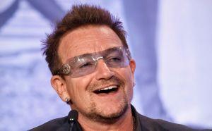 Ponen nombre de Bono a especie de araña (Video)