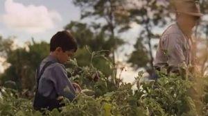 """""""Bless Me, Ultima"""" llega a cines de EEUU (Video)"""