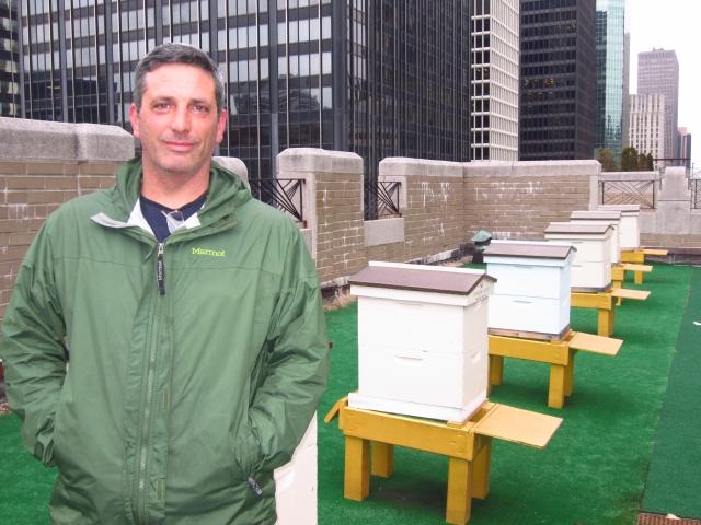 Criando abejas, recorre NY y el mundo