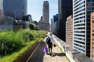 Huertos comunitarios en Chicago, pieza clave para Michelle Obama