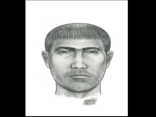 Prófugo violador de niño en baño del Seaport's Pier 17
