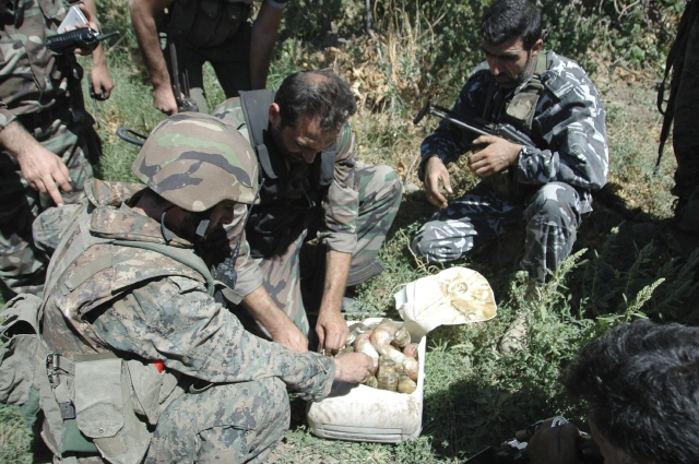 Denuncian asesinato de decenas de kurdos