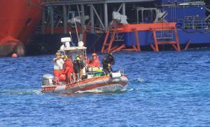 Restos encontrados en el Costa Concordia serían animales