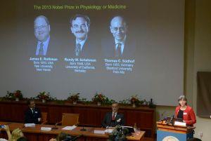 Nobel de Medicina a trío que investigó tráfico celular