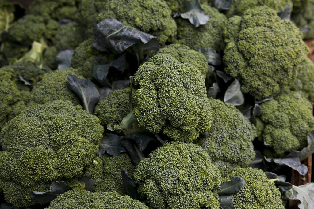 Nuevo brote de listeria en brócoli afecta a EEUU