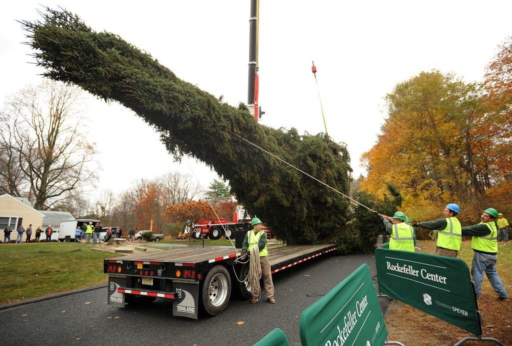 En ruta a NYC el árbol navideño del Rockefeller Center