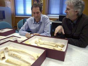 ADN humano más antiguo se encuentra en España