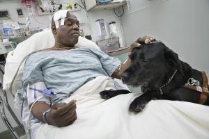 Ciego y su perro sobreviven al tren de NYC (fotos)