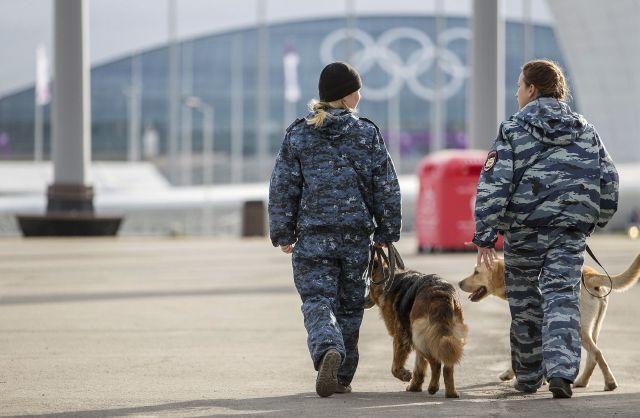 Opiniones divididas en EEUU sobre seguridad en Sochi