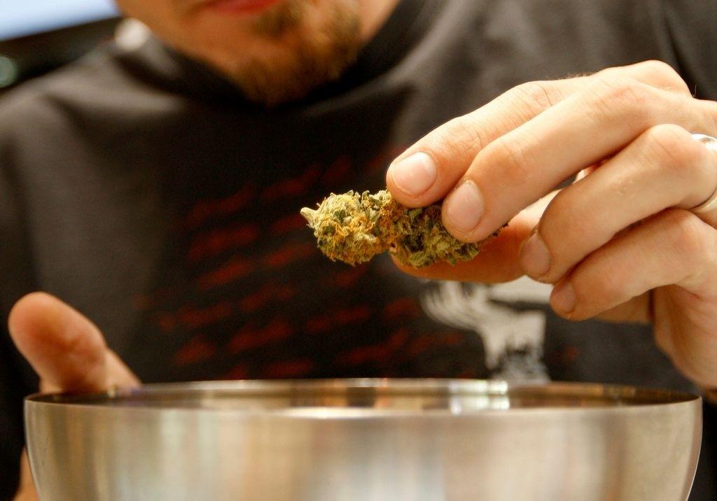 En 34 estados y en Washington DC ya se han ingresado iniciativas sobre el uso de la marihuana, programadas para discutirse este 2014.