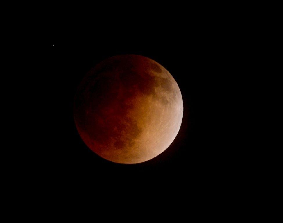 """Los famosos no se perdieron la """"Luna de sangre"""""""
