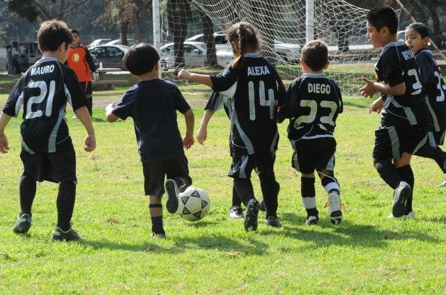 Conmoción cerebral en deportes preocupa a EEUU