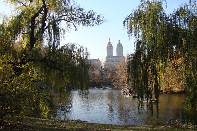 Dos adolescentes asaltan a corredor en el Central Park
