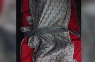 Atan con cinta adhesiva a bebés en guardería de Texas para obligarlos a dormir