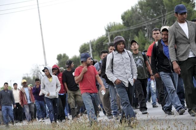 Analizarán crisis de niños migrantes