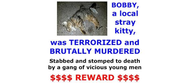 """Residentes de Queens ofrecen recompensa por asesinos del gato """"Bobby"""""""