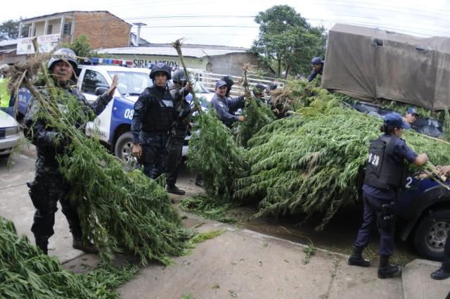Se está perdieno la guerra contra las drogas en LA