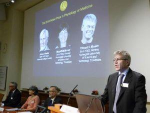 """Descubridores del  """"GPS"""" del cerebro ganan Premio Nobel de Medicina"""