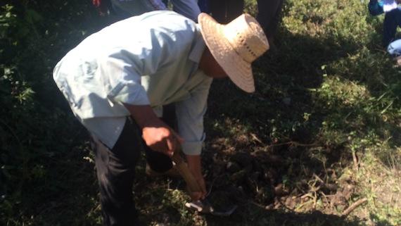Brigadas civiles: Estudiantes de Ayotzinapa están vivos