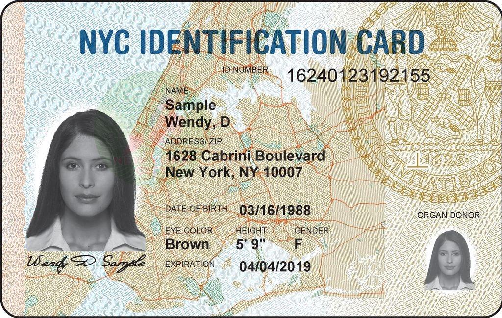 Ya te puedes sacar el ID Municipal de NYC
