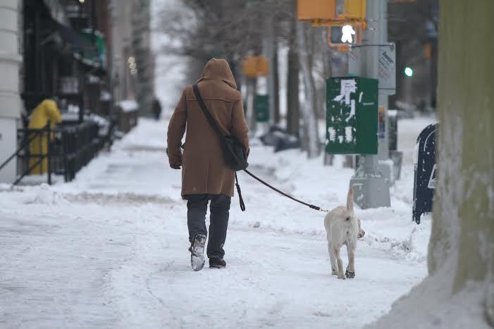 Nueva York tendrá su propio sistema meteorológico (fotos)