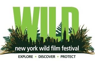 #BuenosDíasNYC: La gran pantalla crea conciencia sobre la vida silvestre