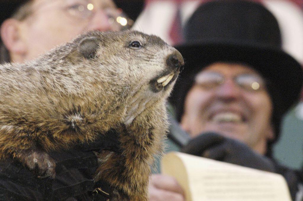 """""""Groundhog Day"""" se celebra siempre el 2 de febrero."""