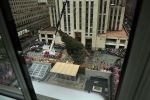 A que no adivinas que harán con el árbol del Rockefeller cuando sea desmontado