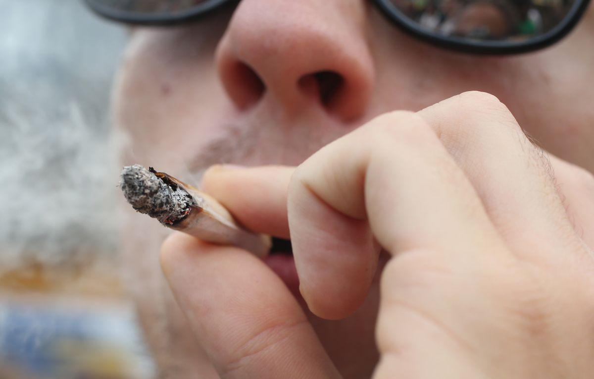 Despenalizar la marihuana reduciría muertes por sobredosis con opioides