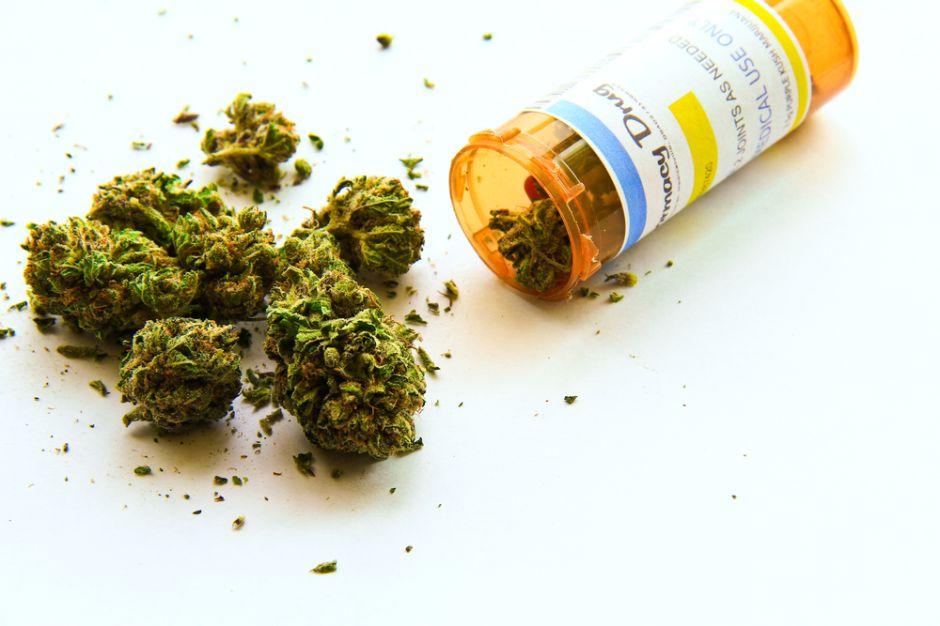 Catorce padecimientos en los que la cannabis puede ayudar