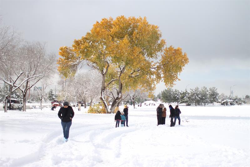 Seguirán bajas temperaturas y nevadas en el norte de México