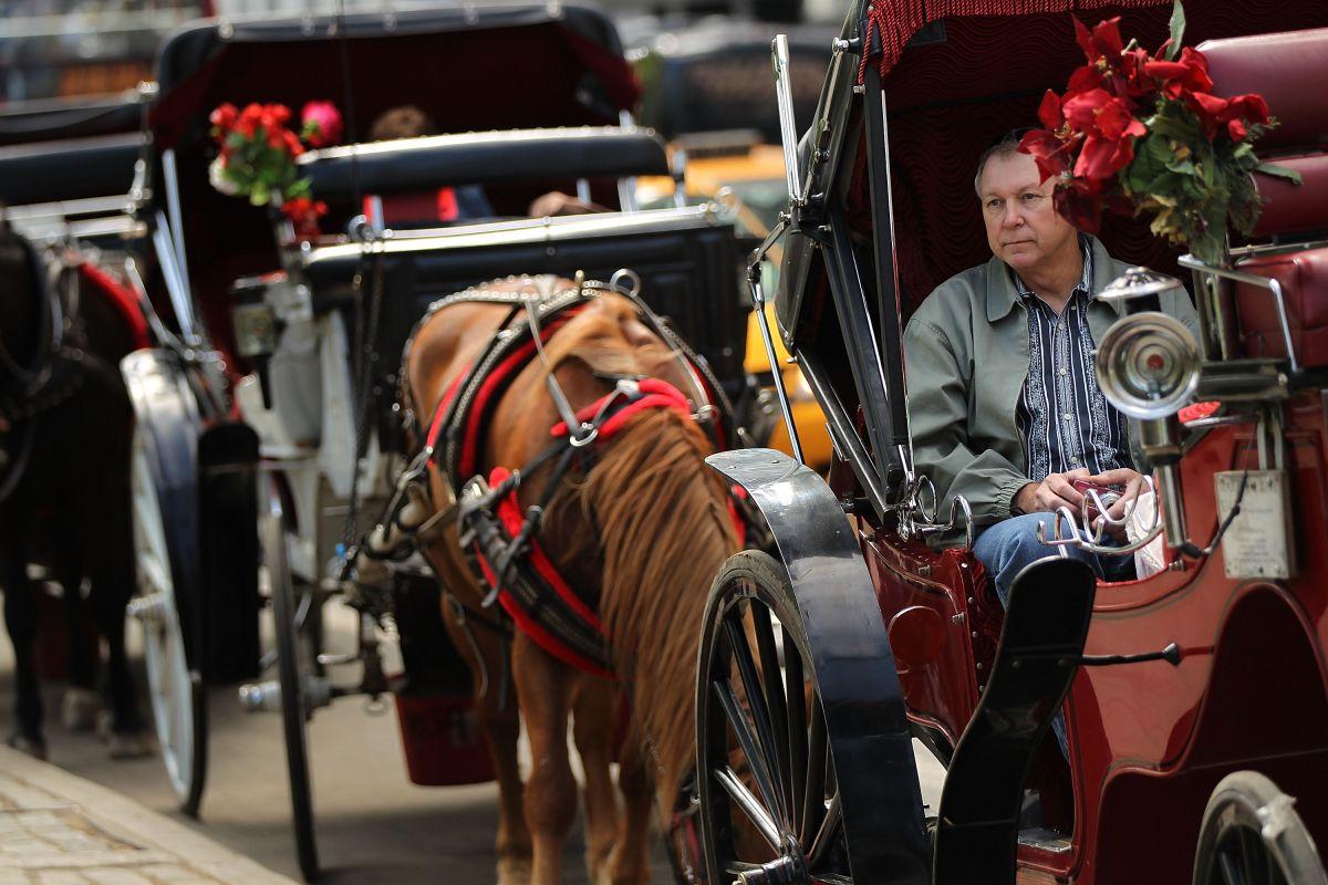 Carruajes de caballos no dejarán el Central Park